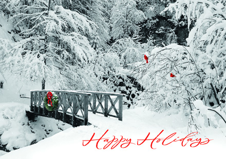 Peaceful Perch Holiday Cards